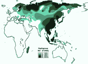 Side block haplogroup no